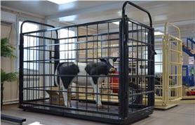 Весы для животных Эльтон (СК)