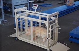 Весы Эльтон-СК для взвешивания поросят, овец и др. мелких животных